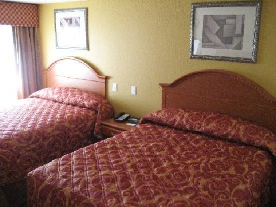Bay Inn & Suites: beds in room