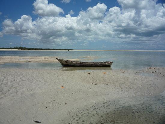 Mafia Island, Tanzania: spiaggia deserta durante la bassa marea