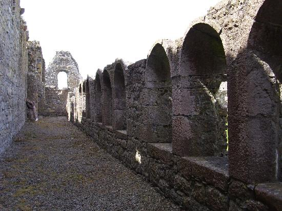 Athassel Priory: Athassal Cloisters