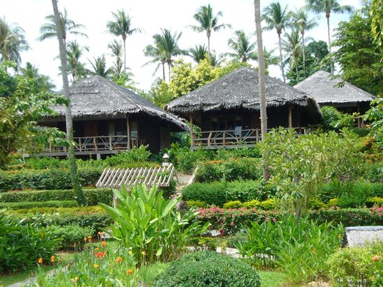 Coral Bay Resort : some bungalows