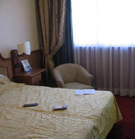 Park Hotel Roma Cassia : Room