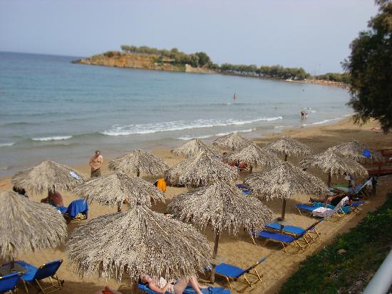 Ammos Hotel: View of beach in front of hotel Ammos