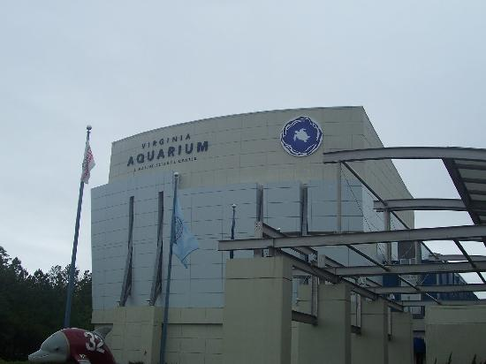 View From Outside Picture Of Virginia Aquarium Marine