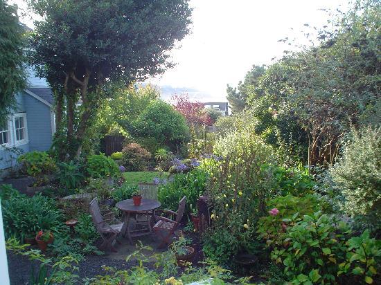 JD House: Garden