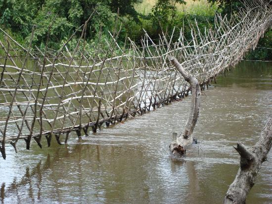 Repubblica Centrafricana: boali pont en liane