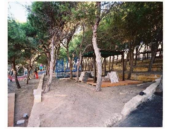 Baia di Ulisse Wellness & SPA: pineta rilassante
