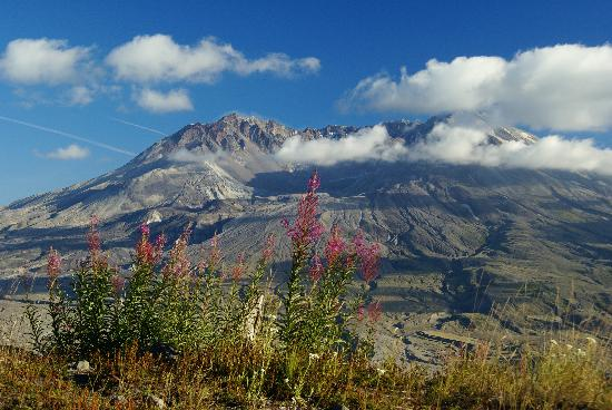 an analysis of a lot of excitement in mt saint helens washington Geology and history summary for mount st helens  mount st helens, located  in washington state, is the most active volcano in the cascade.