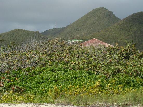 Orient Bay, St-Martin/St Maarten: Orient Beach