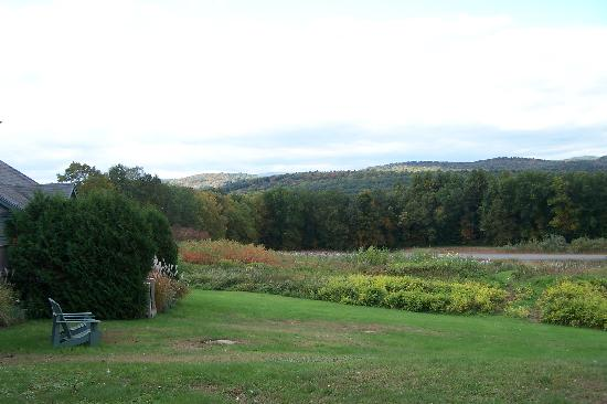 West Chesterfield, NH: View behind the Inn