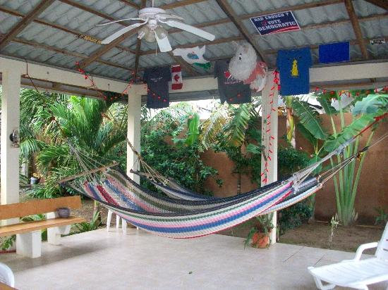 Diving Pelican Inn: The hammocks under the