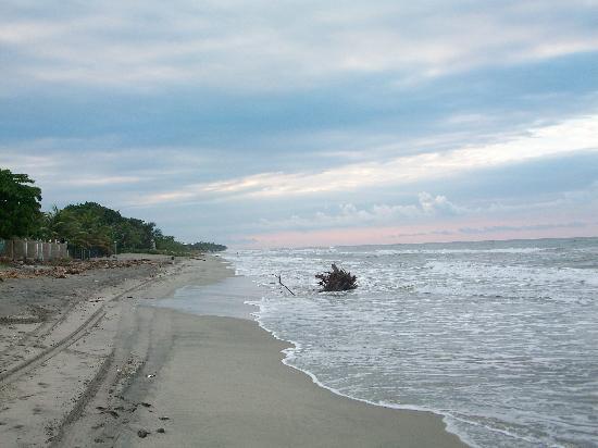 Diving Pelican Inn: The beach at sunset