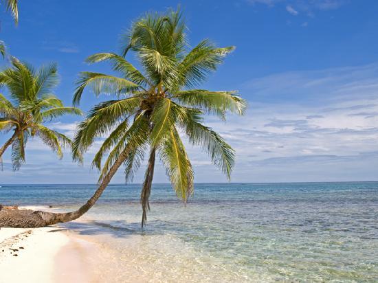 Yandup Island Lodge: Diadup Island Snorkeling Trip