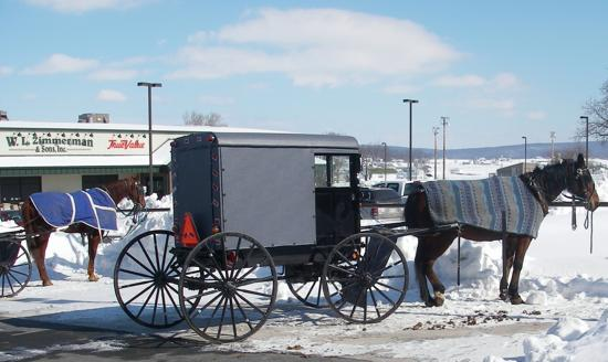 Lancaster County, PA: Shopping Amish Style