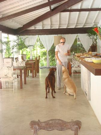 Etnia Pousada & Boutique: Corrado and the dogs having breakfast