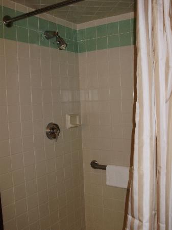 New Haven Hotel: Shower - great water pressure!