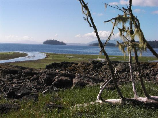Edna Bay, AK: At a very low tide
