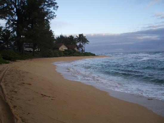 Hale Ho'o Maha Bed & Breakfast: beach half block away at sunrise facing west