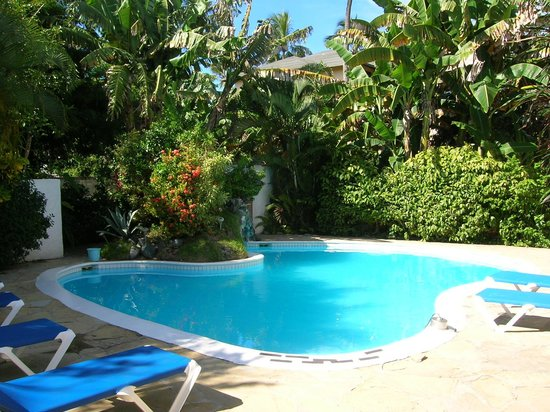 Casa Blanca Hotel & Surf Camp: Pool.