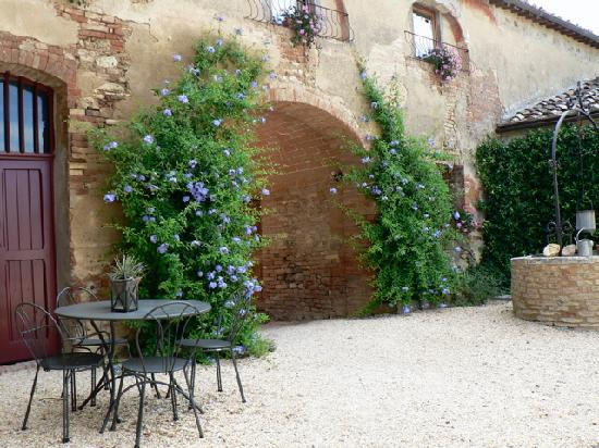 Agriturismo Marciano: courtyard again