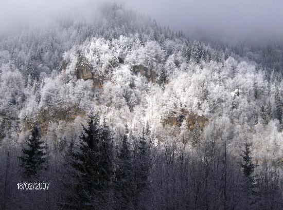 Ramnicu Valcea, Rumania: romanian national park