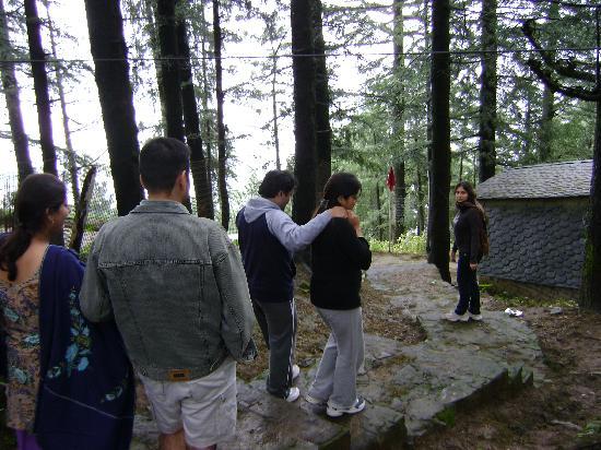 Nature Walk- Kufri