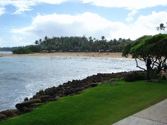 Estates at Turtle Bay : Turtle Bay Resort Nice Beach, Swimming & Snorkel area