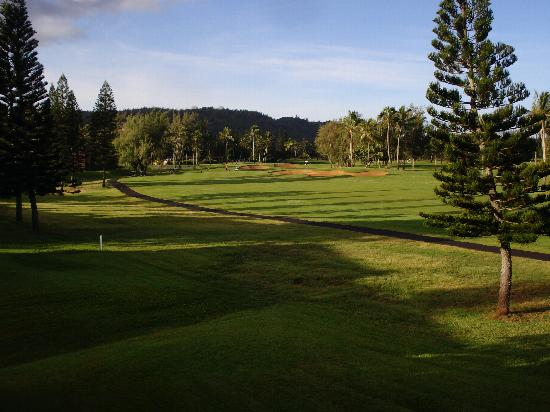 Estates at Turtle Bay: View from 28w condo of the first hole-Fazio course