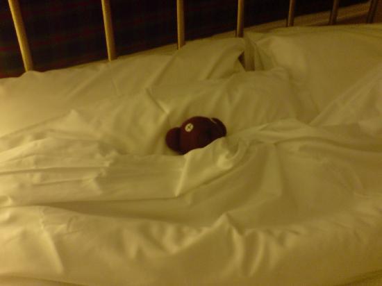 The Victorian Town House: Teddy Settles for a Good nights Sleep :O)
