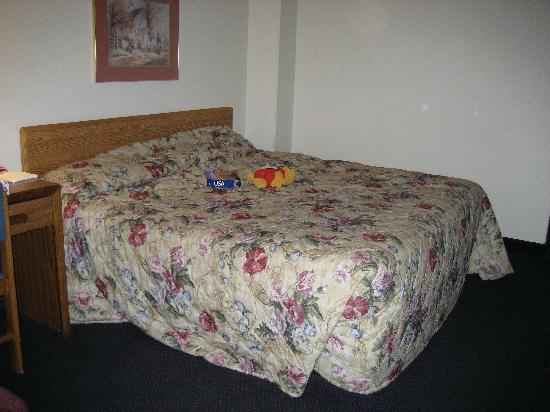 Super 8 Chattanooga Lookout Mountain TN: king room