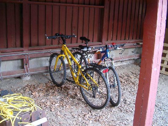 Danhostel Aarhus: parking de bicicletas