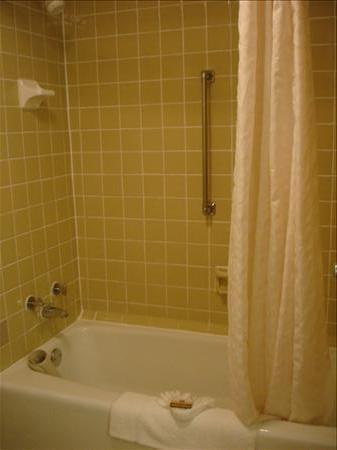 Best Western Fairfax: Shower and Tub