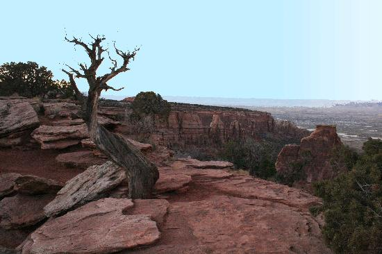 Fruita, CO: Overlook in Colorado National Monument