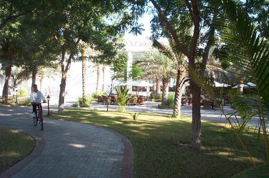 Барка, Оман: Restaurant