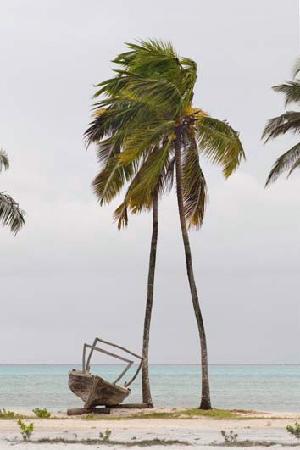 Coral Rock Hotel : Fine-Art photography - jaco@ijworx.co.za. Jambiani, Zanzibar