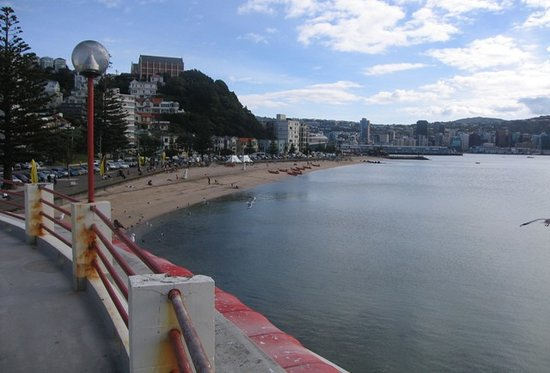 Wellington, Nieuw-Zeeland: Oriental Bay Beach, from the Roof Terrace of Fishermans Table Restaurant.