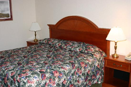 Towne Motel: King Bed Room