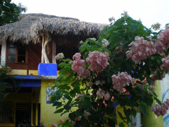 Playa Zicatela: punta zicatela surfcamp estacion b