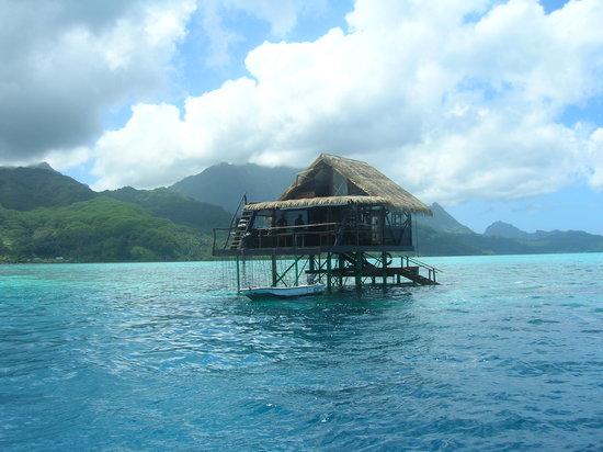 French Polynesia: Granja de Perlas . Raiatea
