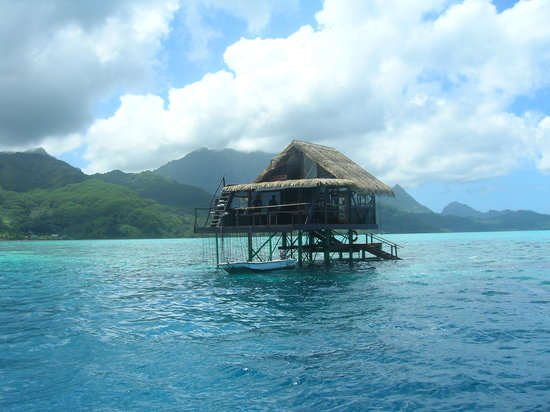 Polynésie française : Granja de Perlas . Raiatea