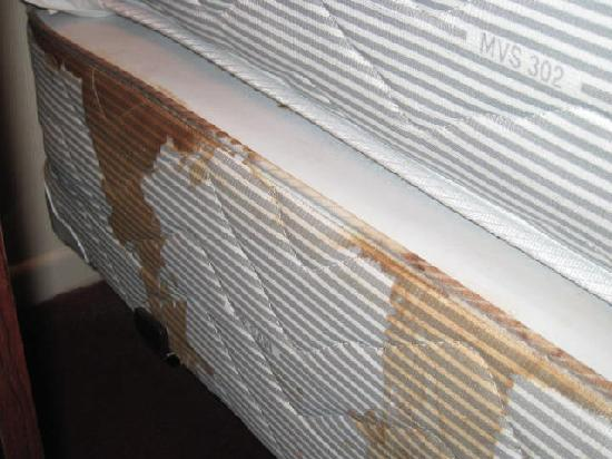 Rodeway Inn Magic Mountain Area: Blood stained Box Spring