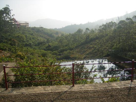 Mundax Homestay Yoga Retreat: garden view