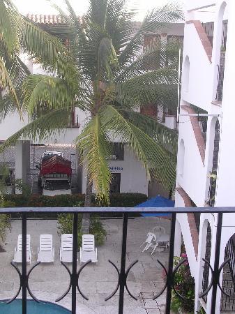 Estancia San Carlos: Pool area palm