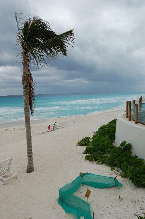The Westin Lagunamar Ocean Resort Villas & Spa, Cancun: BEACH