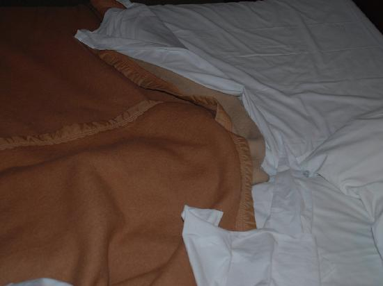 Hotel Prinse : Blanket type