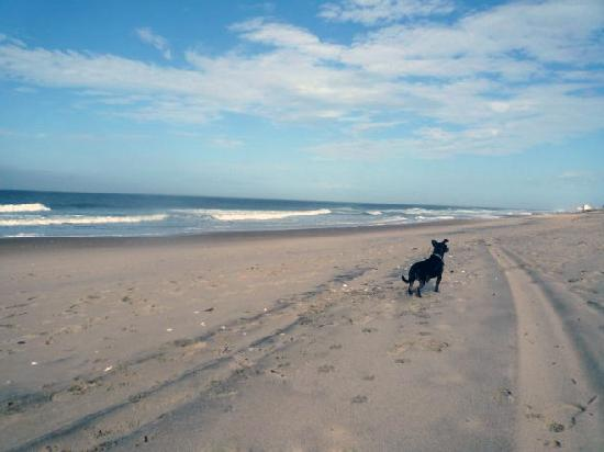 Another Picture Of Dewey Beach