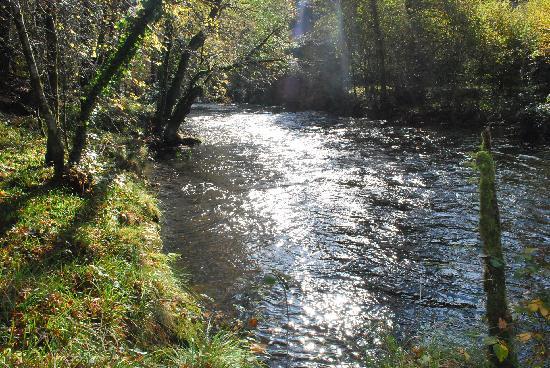 Le Ranch des Lacs : Stream nearby wonder walk
