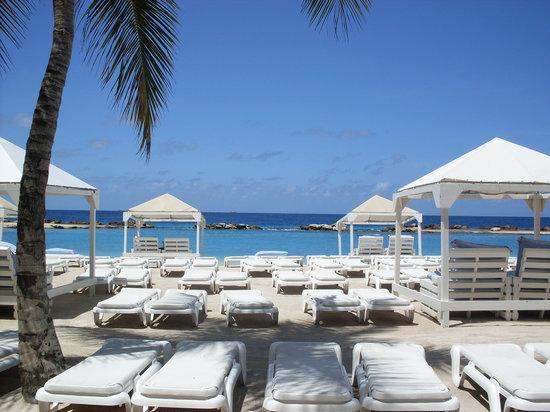 Willemstad, Curacao: playa mambo-seauarium
