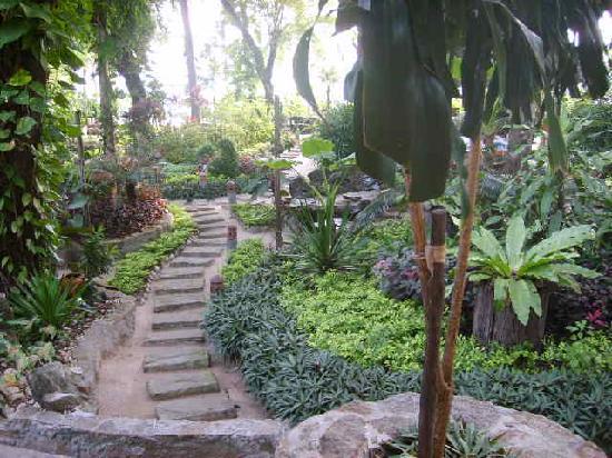 Ko Tao Resort: beautiful grounds