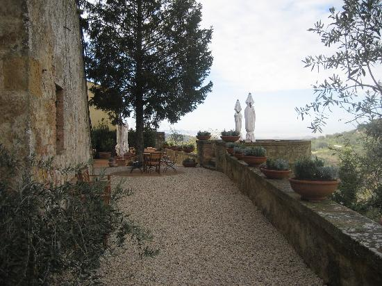 Palazzo Brandano : The Patio