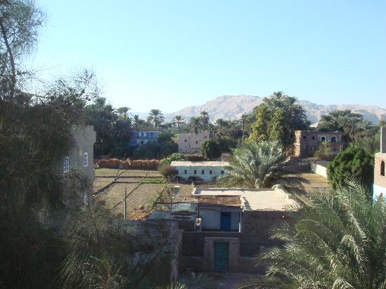 Amon Hotel Luxor: view from hotel balcony